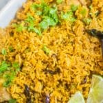 Instant Pot Chicken Biryani
