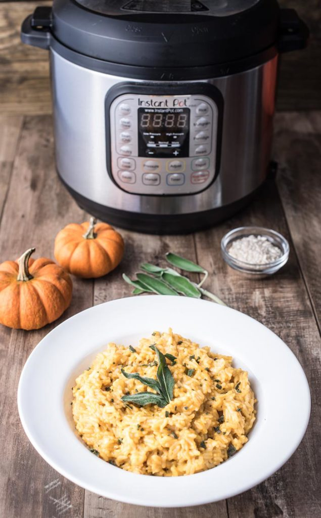 Instant Pot Autumn Recipe Round Up