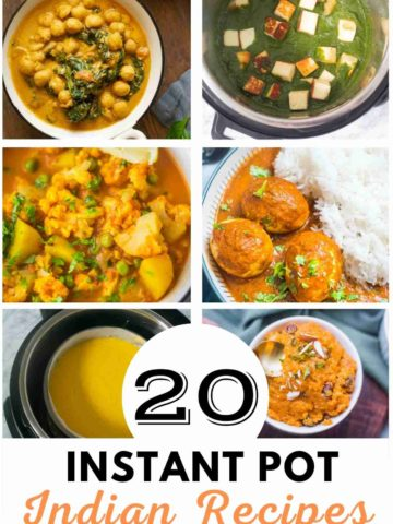 A collage of popular Instant Pot Indian Recipes