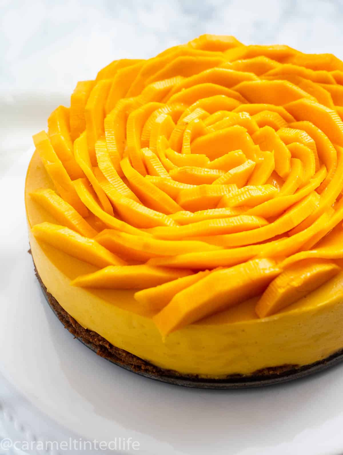 Close up of mango cheesecake with mango slices on top