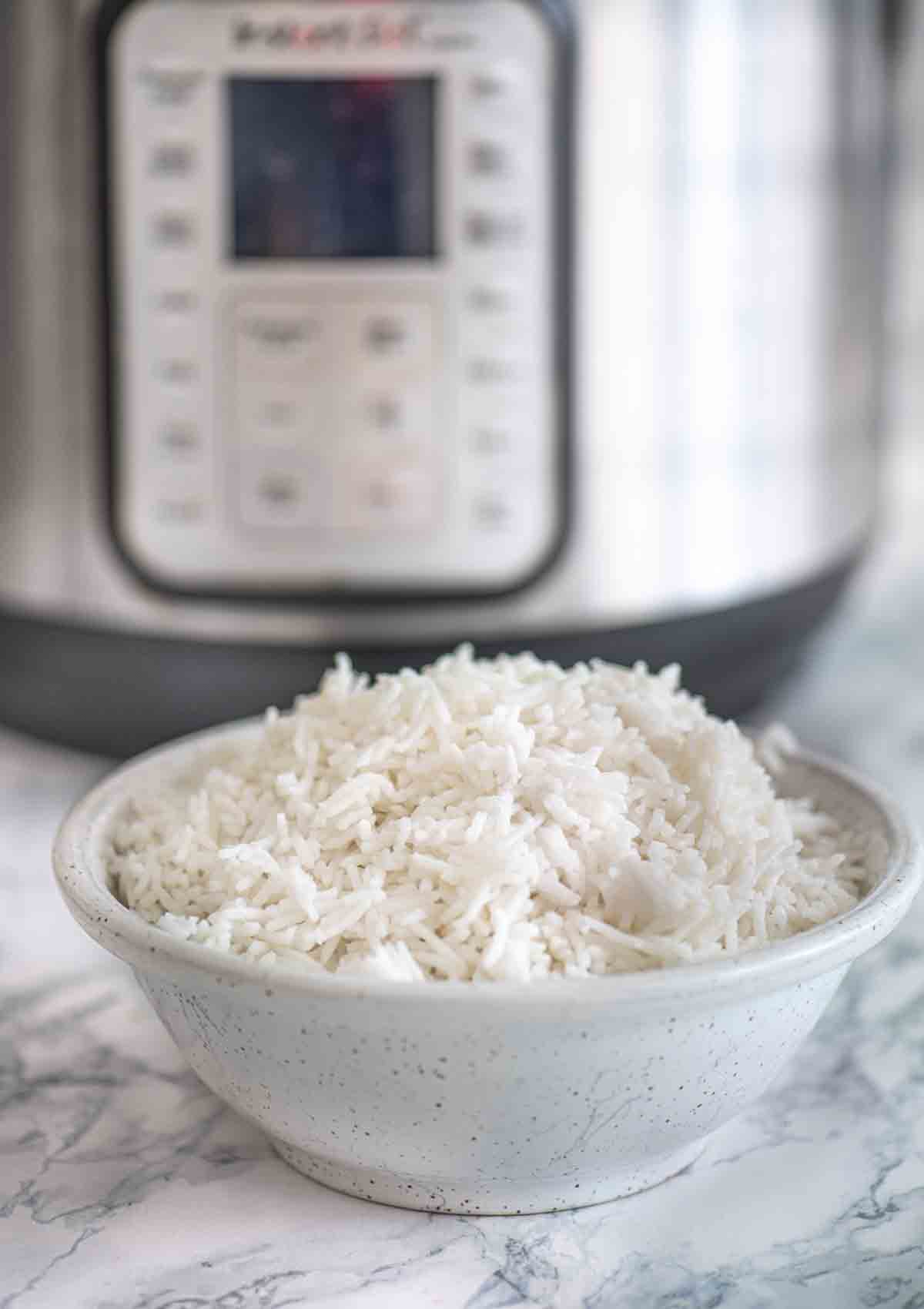 A bowl of rice in front of an Instant Pot
